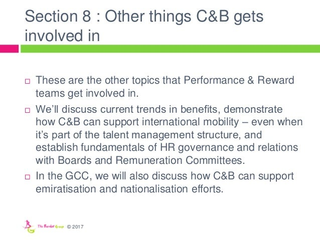 Section 8 : Other things C&B gets involved in  These are the other topics that Performance & Reward teams get involved in...