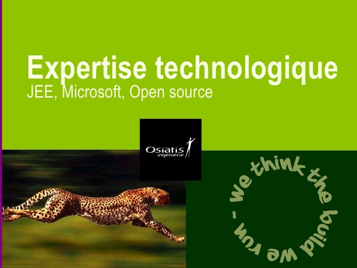 Expertise technologique JEE, Microsoft, Open source