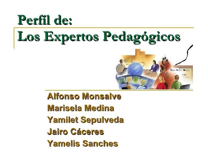 Perfíl de: Los Expertos Pedagógicos Alfonso Monsalve Marisela Medina Yamilet Sepulveda Jairo Cáceres Yamelis Sanches