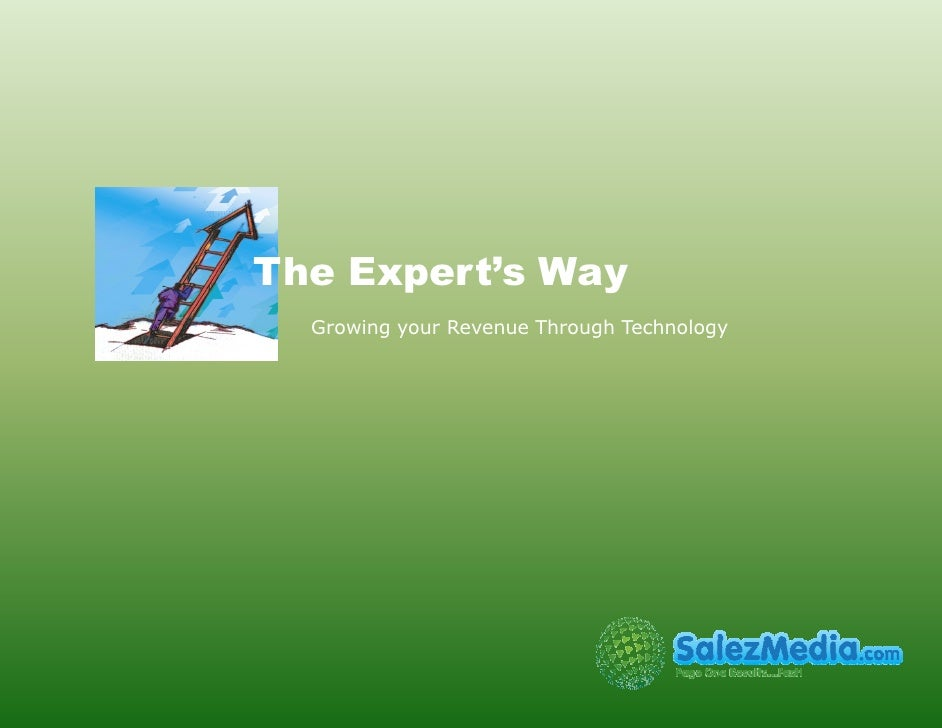 The Expert's Way   Growing your Revenue Through Technology