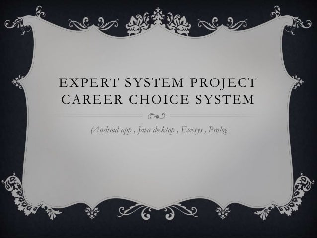 Expert system project