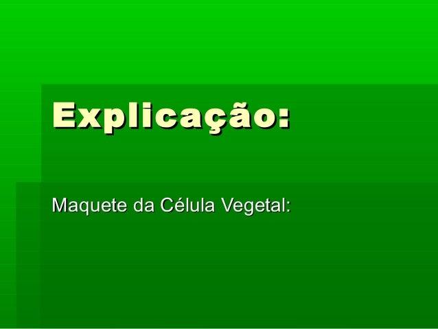 Explicação: Maquete da Célula Vegetal:
