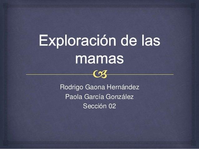 Rodrigo Gaona Hernández Paola García González Sección 02