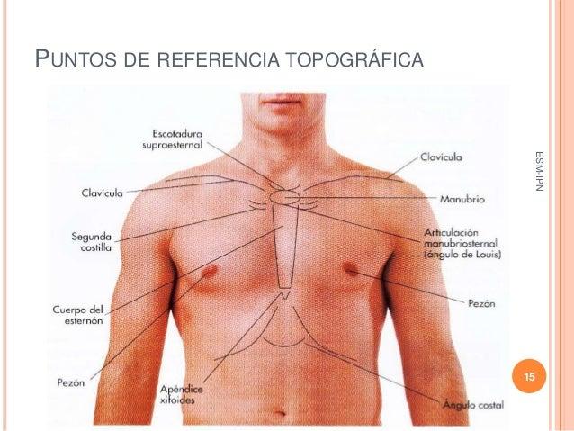 INSPECCION DE TORAX EPUB