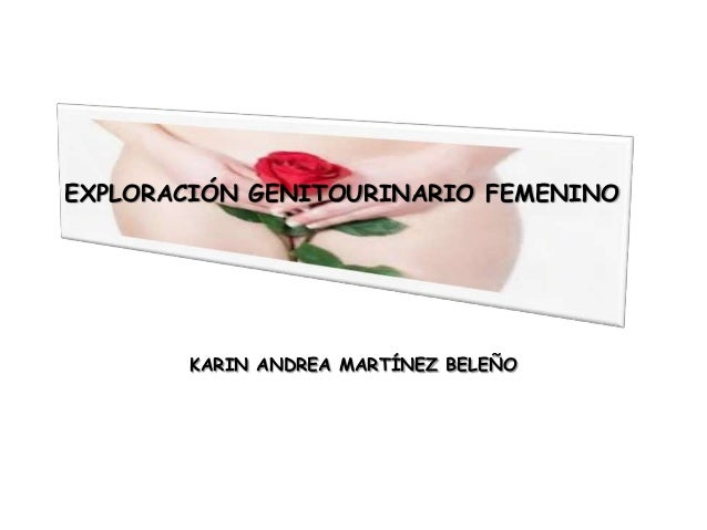 EXPLORACIÓN GENITOURINARIO FEMENINOKARIN ANDREA MARTÍNEZ BELEÑO