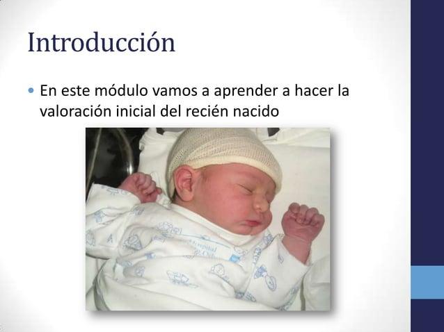 Introducción• En este módulo vamos a aprender a hacer lavaloración inicial del recién nacido