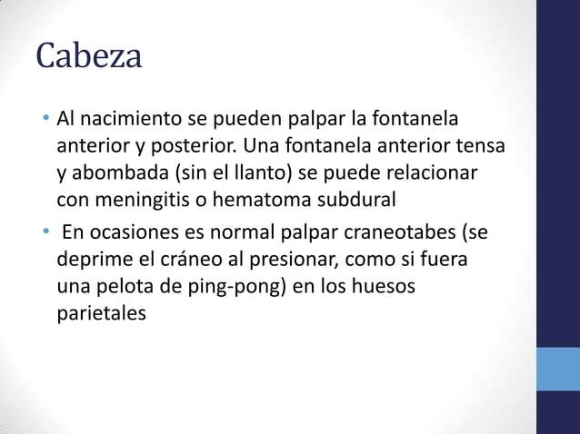 Cabeza• Al nacimiento se pueden palpar la fontanelaanterior y posterior. Una fontanela anterior tensay abombada (sin el ll...