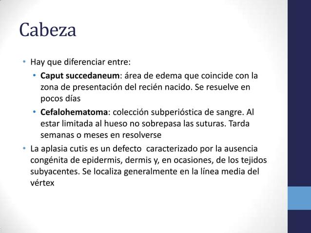 Cabeza• Hay que diferenciar entre:• Caput succedaneum: área de edema que coincide con lazona de presentación del recién na...