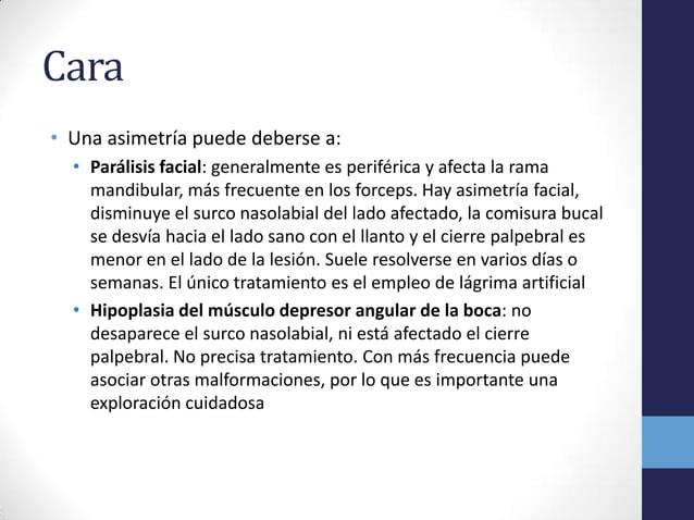Cara• Una asimetría puede deberse a:• Parálisis facial: generalmente es periférica y afecta la ramamandibular, más frecuen...