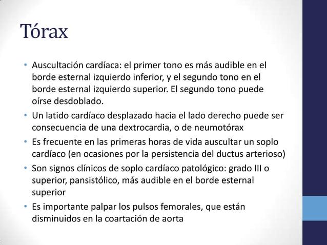Tórax• Auscultación cardíaca: el primer tono es más audible en elborde esternal izquierdo inferior, y el segundo tono en e...