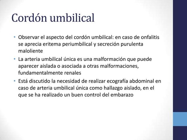 Cordón umbilical• Observar el aspecto del cordón umbilical: en caso de onfalitisse aprecia eritema periumbilical y secreci...