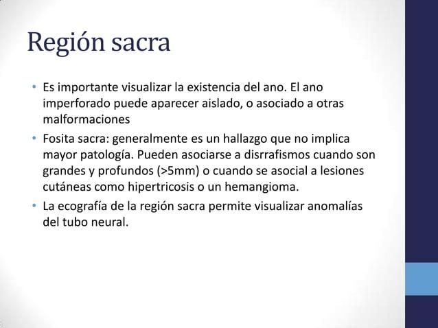 Región sacra• Es importante visualizar la existencia del ano. El anoimperforado puede aparecer aislado, o asociado a otras...