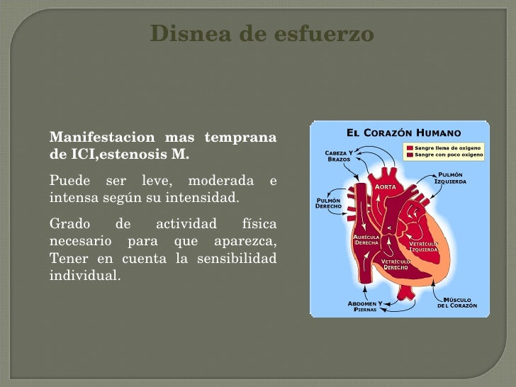 Exploracion semiologia del torax cardiaco