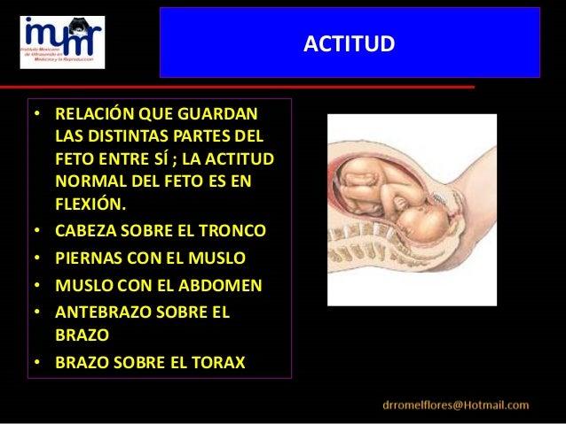 Exploracion ultrasonografica en obstetricia