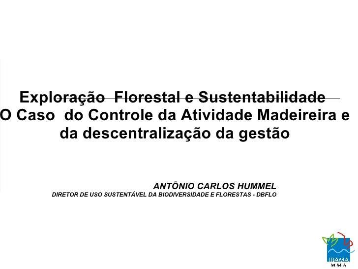 Exploração Florestal e Sustentabilidade Caso do Controle da Atividade Madeireira e      da descentralização da gestão     ...