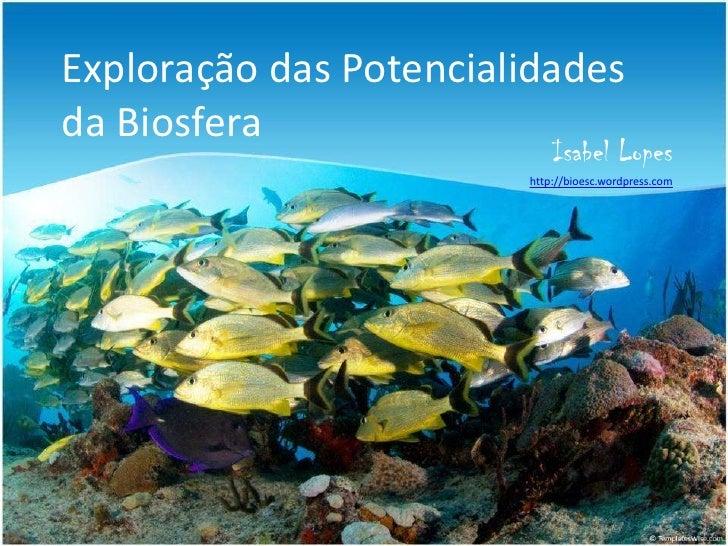 Exploração das Potencialidades da Biosfera<br />Isabel Lopes<br />http://bioesc.wordpress.com<br />