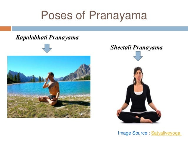 An introduction to various types of yoga