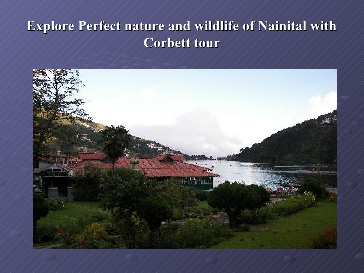 Explore Perfect nature and wildlife of Nainital with                   Corbett tour