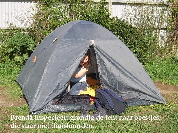 Brenda inspecteert grondig de tent naar beestjes,  die daar niet thuishoorden.
