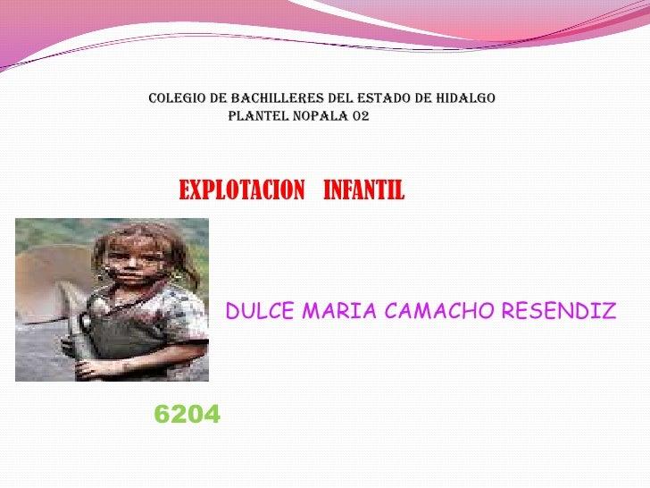 COLEGIO DE BACHILLERES DEL ESTADO DE HIDALGO           <br />                     PLANTEL NOPALA 02<br />EXPLOTACION   INF...