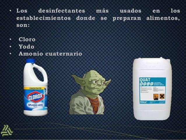 Limpieza correcta del equipo utensilios e instalaciones for Manual de limpieza y desinfeccion para una cocina