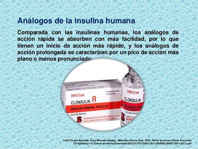 Expo insulina