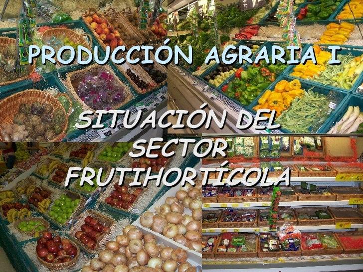 PRODUCCIÓN AGRARIA I SITUACIÓN DEL SECTOR FRUTIHORTÍCOLA