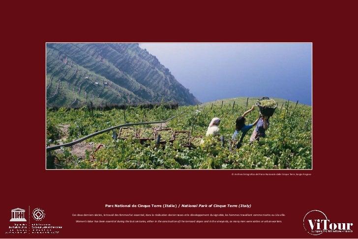 Les Vignobles du patrimoine mondial Slide 3