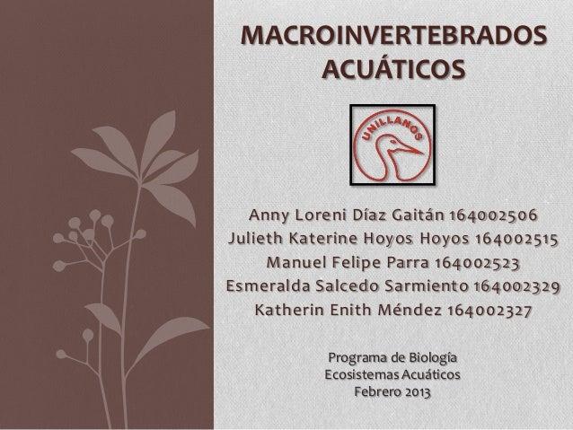 MACROINVERTEBRADOS     ACUÁTICOS  Anny Loreni Díaz Gaitán 164002506Julieth Katerine Hoyos Hoyos 164002515     Manuel Felip...