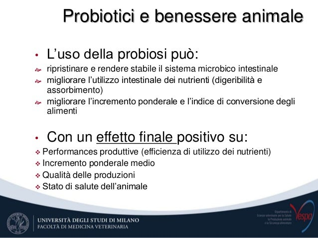 Nutrizione E Benessere Animale Negli Animali D Allevamento