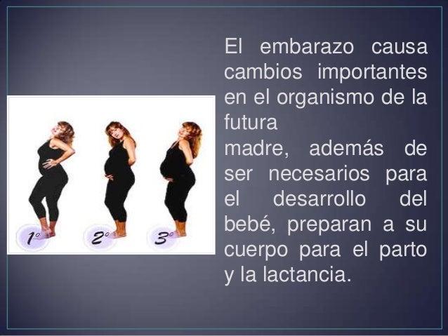 • El bebé mide 1/4 pulgada de largo. • El corazón, el sistema digestivo, la espina dorsal y la médula espinal empiezan a f...