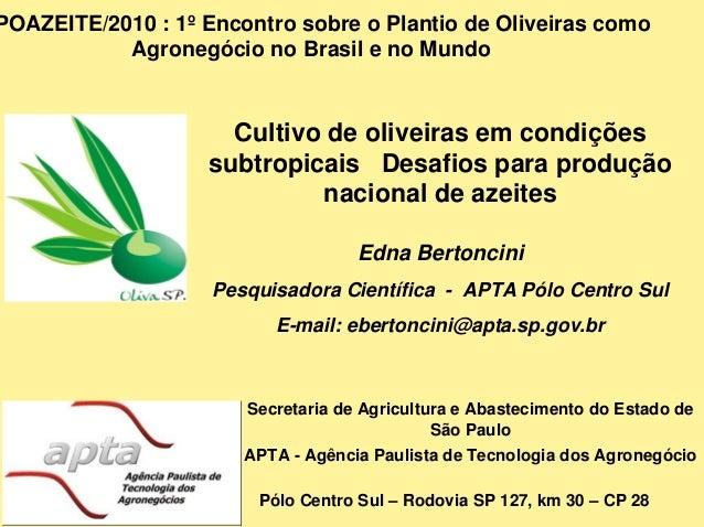 Cultivo de oliveiras em condições subtropicais Desafios para produção nacional de azeites Edna Bertoncini Pesquisadora Cie...