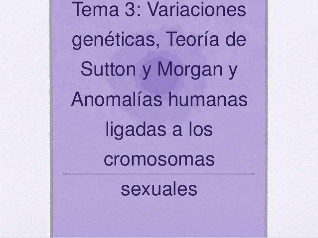 Tema 3: Variaciones genéticas, Teoría de Sutton y Morgan y Anomalías humanas ligadas a los cromosomas sexuales
