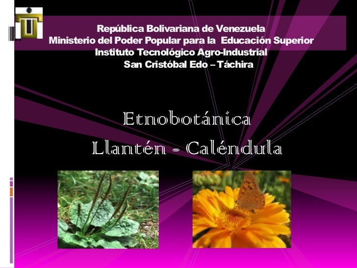 República Bolivariana de VenezuelaMinisterio del Poder Popular para la  Educación SuperiorInstituto Tecnológico Agro-Indus...
