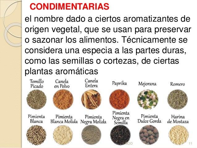 Exposici n sobre hierbas for Cultivo de plantas aromaticas y especias