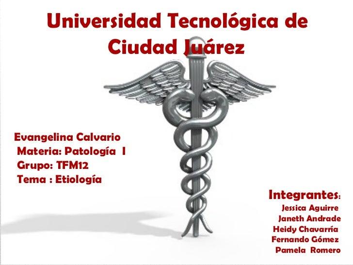 Universidad Tecnológica de           Ciudad JuárezEvangelina CalvarioMateria: Patología IGrupo: TFM12Tema : Etiología     ...