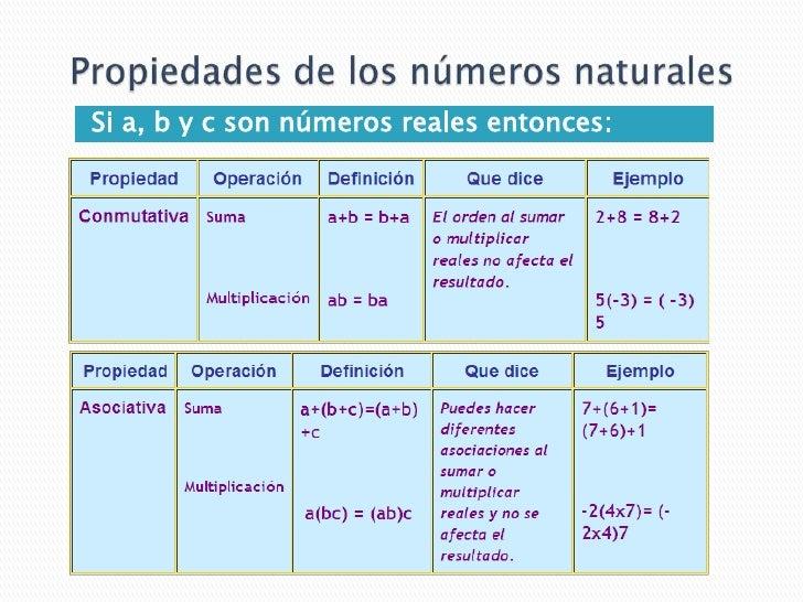 Recta numerica calculo for Inmobiliaria definicion