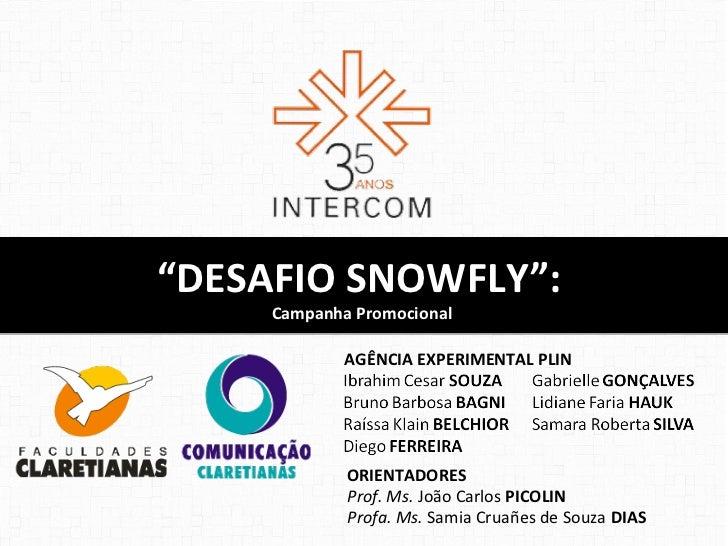 """""""DESAFIO SNOWFLY"""":     Campanha Promocional             AGÊNCIA EXPERIMENTAL PLIN             ORIENTADORES             Pro..."""