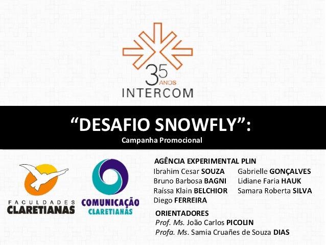 """""""DESAFIO SNOWFLY"""":""""DESAFIO SNOWFLY"""":     Campanha Promocional      Campanha Promocional             AGÊNCIA EXPERIMENTAL P..."""