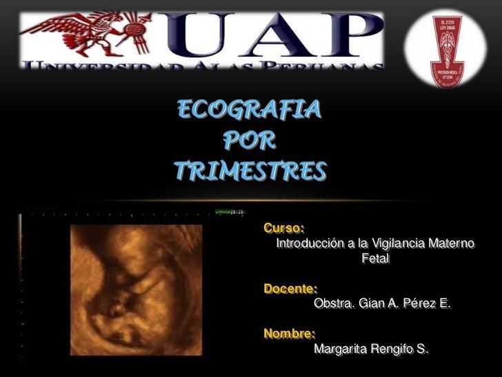 ECOGRAFIA   PORTRIMESTRES      Curso:       Introducción a la Vigilancia Materno                       Fetal      Docente:...