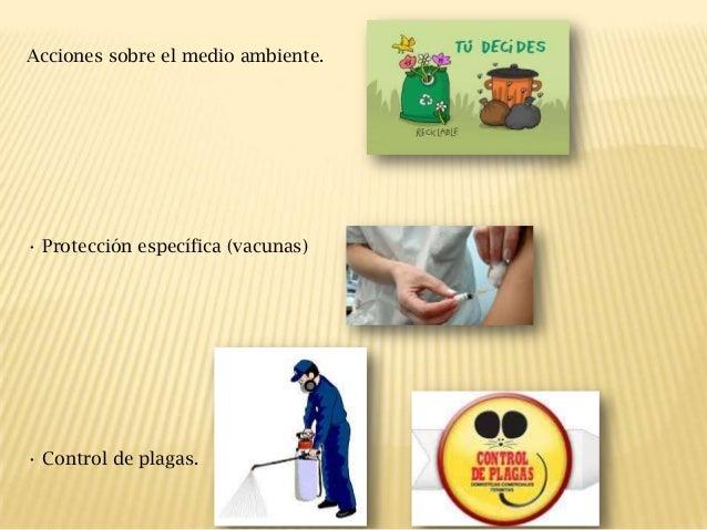 Acciones sobre el medio ambiente.  • Protección específica (vacunas)  • Control de plagas.