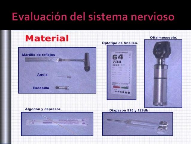 examen fisico neurologico Slide 2