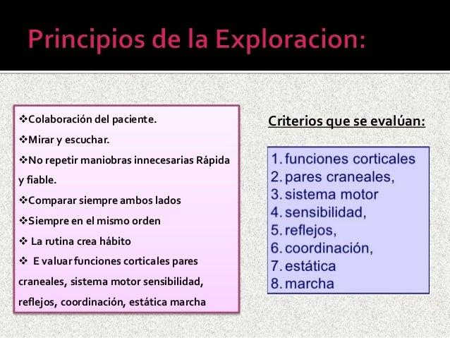 examen fisico neurologico Slide 3