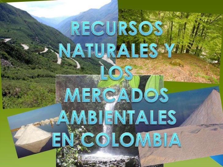 RECURSOS NATURALES Y LOS MERCADOS AMBIENTALES EN COLOMBIA<br />