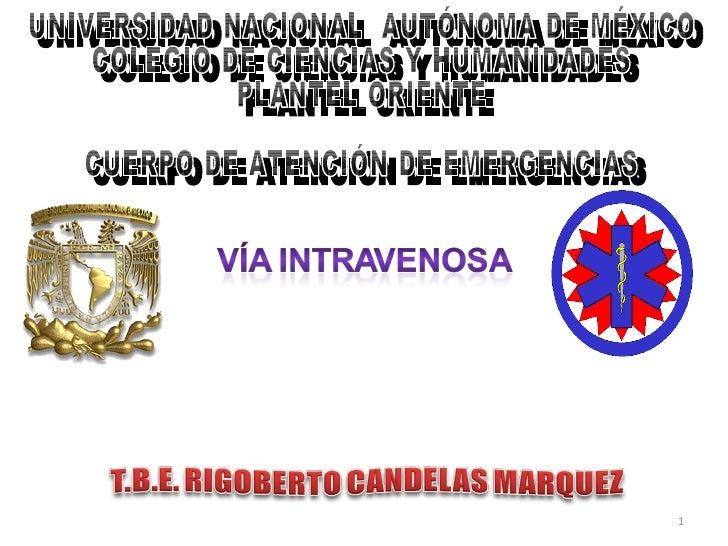 UNIVERSIDAD NACIONAL  AUTÓNOMA DE MÉXICO COLEGIO DE CIENCIAS Y HUMANIDADES PLANTEL ORIENTE CUERPO DE ATENCIÓN DE EMERGENCIAS