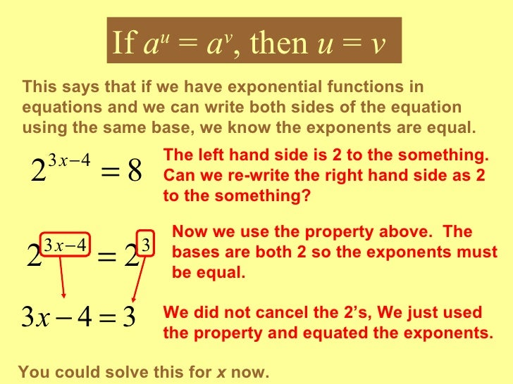 the exponential function essay