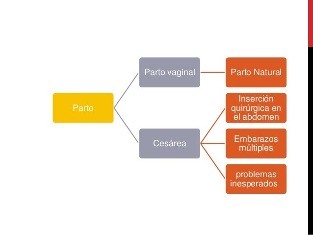 EMBARAZO ETAPA FINAL  Slide 2