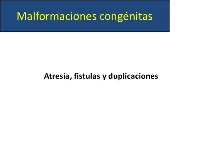 Expo patologias del tracto digestivo Slide 2