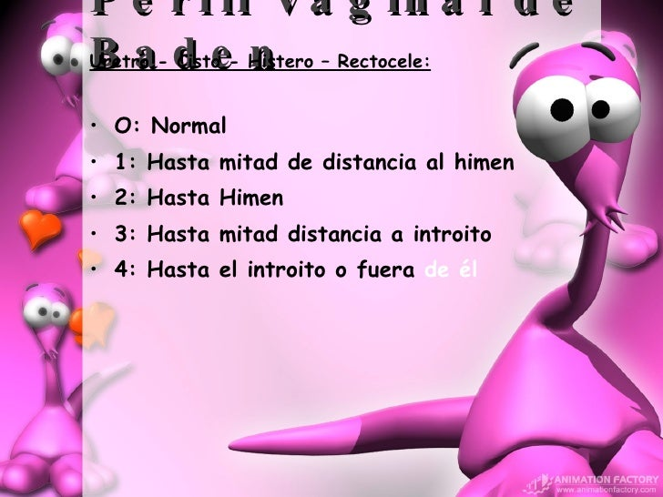 Perfil Vaginal de Baden <ul><li>Uretro - Cisto - Histero – Rectocele: </li></ul><ul><li>O: Normal </li></ul><ul><li>1: Has...