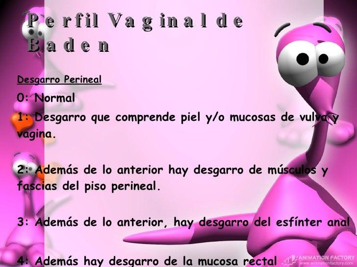 Perfil Vaginal de Baden <ul><li>Desgarro Perineal </li></ul><ul><li>0: Normal </li></ul><ul><li>1:  Desgarro que comprende...